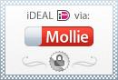 IDEAL via MOLLIE logo